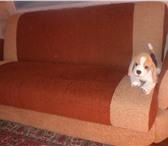 Фото в Мебель и интерьер Мебель для прихожей продаю диван книжка в хорошем состоянии имеются в Барнауле 6000