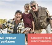 Фотография в Хобби и увлечения Рыбалка Рыболовный сервис на Fish.Travel - это международный в Москве 1500