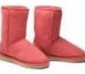 Изображение в Одежда и обувь Женская обувь Угги,  Koalabi UGGS,  зимние сапожки  сезона в Донецк 0