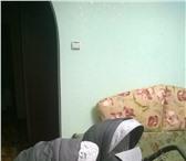 Изображение в Для детей Детские коляски Продам детскую коляску Santana by Bebe –mobile в Старом Осколе 15000