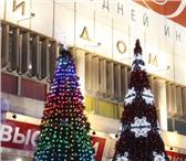 Foto в Работа Разное Купить уличную елку в городе Балашиха   Компания в Балашихе 18000