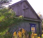 Изображение в Недвижимость Сады участок 4 сот.Имеется небольшой колодец.Домик в Пензе 100000