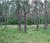 Foto в Недвижимость Коттеджные поселки КОТТЕДЖНЫЙ ПОСЕЛОК «Лесной край» в Брянске 70000
