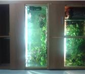 Фото в Домашние животные Рыбки Стеллаж с аквариумами на 400 и 250 литров в Челябинске 20000