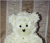 Фото в Домашние животные Растения Дарить цветы – одна из самых больших радостей! в Барнауле 600