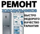 Фотография в Электроника и техника Холодильники Ремонт холодильников , морозильных ларей в Уфе 300