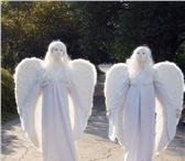 Изображение в Развлечения и досуг Организация праздников Живые статуи или живые скульптуры. Удачно в Москве 3000