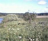 Foto в Недвижимость Коммерческая недвижимость Продам земельный участок в поселке Первомайская в Москве 450000