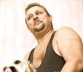 Фотография в Домашние животные Вязка собак Для вязки со здоровой сукой предлагаю четырёхлетнего в Москве 10000