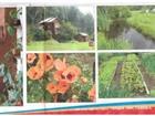 Изображение в Отдых и путешествия Дома отдыха Расположение: Гостевой дом «Заимка» находится в Иркутске 600