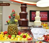 Фотография в Развлечения и досуг Организация праздников на свадьбу, юбилеи, дни рождения, семейные в Брянске 70
