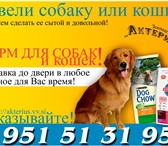 Фотография в Домашние животные Корм для животных Корма и диеты от Компаний Пурина(Purina) в Ростове-на-Дону 0