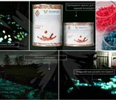 Фотография в Строительство и ремонт Отделочные материалы Люминесцентная краска Acmelight Faсade - в Владивостоке 3900