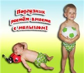 Фотография в Для детей Товары для новорожденных Многоразовые подгузники «КОНОПУША» изготовлены в Москве 500