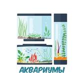 """Foto в Домашние животные Рыбки Интернет-магазин """"Ho-fish"""" осуществляет продажу в Москве 100"""