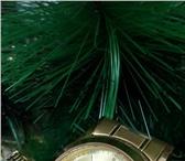 Фотография в Одежда и обувь Часы Продам часы мужские наручные кварцевые бренда в Калининграде 2490