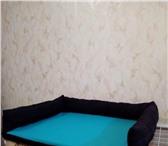 Фотография в Домашние животные Товары для животных Лежанки для домашних любимцев под заказ. в Красноярске 350