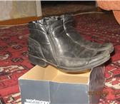 Foto в Одежда и обувь Детская одежда Продам:куртка джинсовая рост 150-152 цена в Челябинске 0