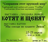 Foto в Домашние животные Выставки собак 22-23 апреля в Тамбовской картинной галерии в Тамбове 0